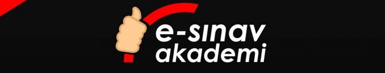 e-sinavakademi.com